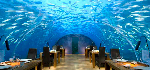 Ithaa Undersea Restuarant is Conrad Maldives