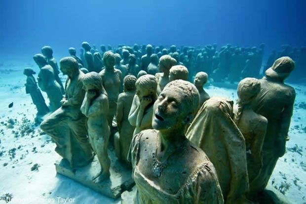 Silent Evolution Sculptures.