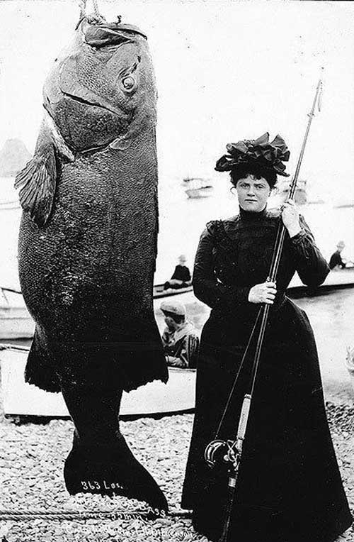 Big Fish Great Clothes