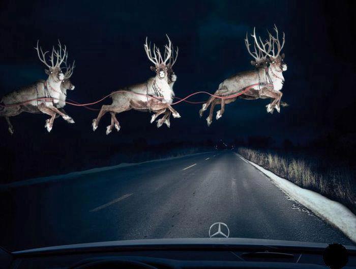 Reindeer Overhead – Latest Santa Sighting