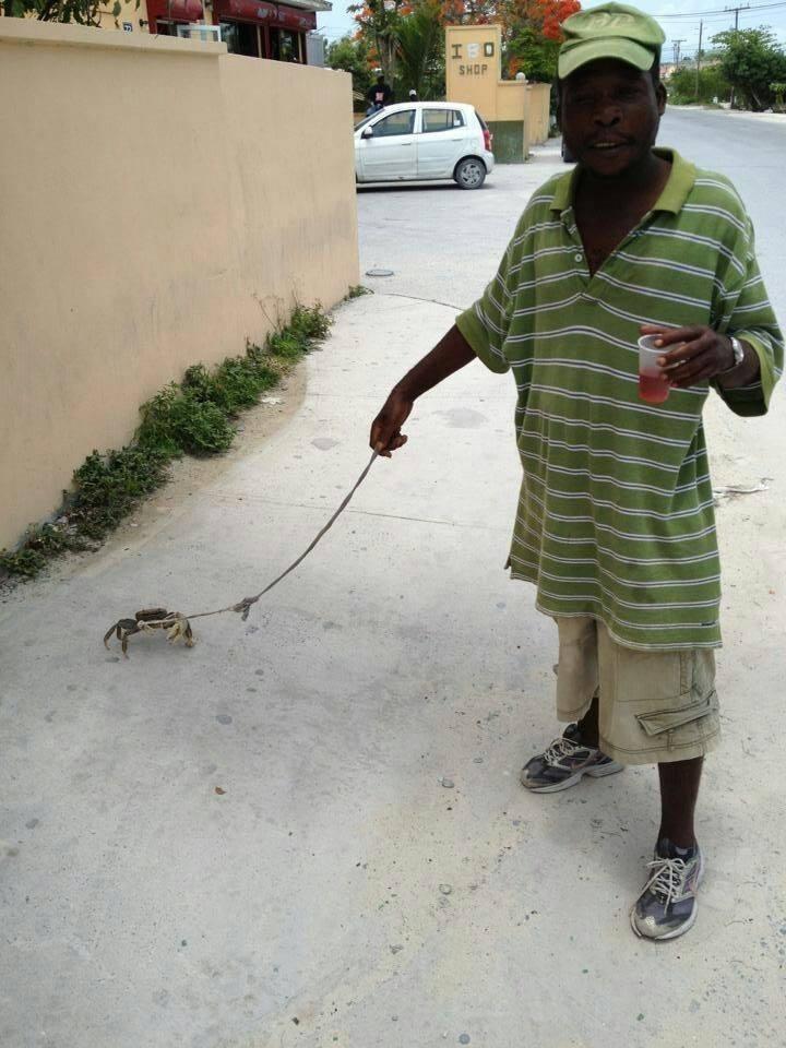 Walking my Pet Crab