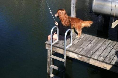 Lady dog fishing