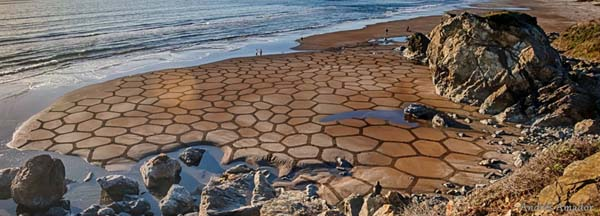 Beach Art by Andres Amador