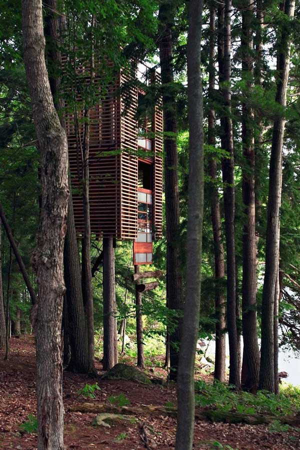 17 Tree House Getaways That Will Absolutely Blow Your Mind. Wait 'Til You See #11…OMG!